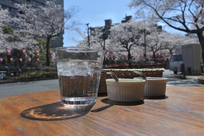 桜が見えるカフェでゆっくりお茶するのも良いですね。ぽかぽかの陽射しの下で過ごす休日は、幸せ気分を運んでくれそう。