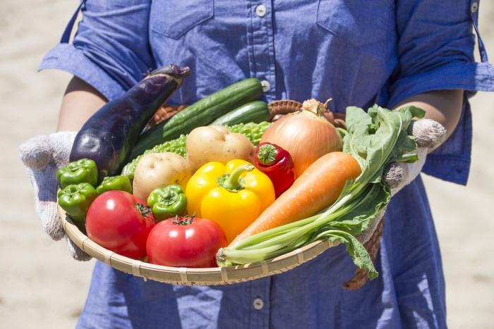 ビタミンAは健康の維持に欠かせない栄養です。不足気味になると細菌やウイルスへの抵抗力が弱まってしまうでしょう。にんじん、かぼちゃ、ブロッコリー、ほうれん草など緑黄色野菜にたくさん含まれています。
