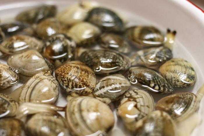 貝の身を噛んだら「ジャリッ!」とした食感が…残念な思いをしたことのある方も多いのではないでしょうか。これは貝の中に入った砂が原因。貝は砂の中で呼吸や食事をして生きていますが、その際に砂も一緒に取り込んでしまうのだそう。つまり、貝をよく洗ったとしても、貝の中の砂はそのまま残ってしまうのです。  そのため、貝がまだ生きているうちに砂を吐き出してもらう必要があります。せっかくのおいしい貝も砂が入っていると味わいが半減。気持ちよく味わうためにも、料理前にはしっかりと貝の砂抜きをしましょう。