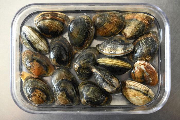 貝の砂抜きには、塩水が必要です。貝の生息する環境に近づけると、より砂を吐き出しやすくなりますよ。アサリやハマグリの場合は、『海水程度の塩水』を目指しましょう。  こちらは、200mlに塩小さじ1くらいの濃度です。タッパなどに貝を重ならないように入れたら、塩水を注ぎます。塩水の量は、貝の頭が少し出るくらいのひたひたがベスト。フタやラップを被せて、冷暗所に2~3時間置いておけばOKです。砂出しが完了したら、貝を洗って調理スタート♪