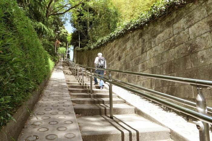 """「胸突坂」は、「椿山荘」と「肥後細川庭園」の間、神田川沿いの歩道から目白通りへと向かう急坂です。 """"胸を突く""""ように歩かなければ上れないことから坂の名前が付いていますが、階段と手すりが整備され、途中には腰掛けられる休憩スペースもあるので、印象とは異なって歩きやすい坂道です。"""