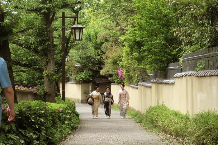 中でも、関口の「江戸川公園」から「面影橋」までの川沿いの道は、「椿山荘」や「肥後細川庭園」といった江戸屋敷の風情と、豊かな緑が相俟って気持ち良く、散策にお勧めです【目白台下・神田川沿い遊歩道】