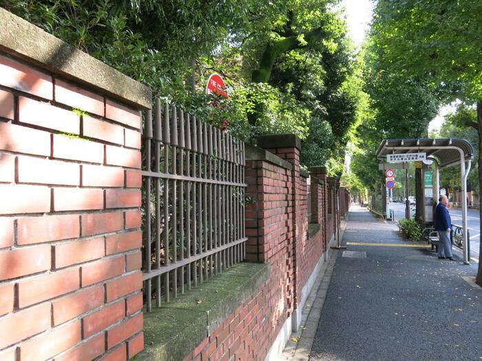先に述べたように、ここは教育施設や学術機関が多く集まる、都内有数の文教地区です。 条例によって建築用途制限があるため、当界隈は、武士や名士らが住み支えた土地の歴史と相俟って、都心部とは思えないほどに、街全体が静かで、穏やか。落ち着いた雰囲気です。【目白通り沿いに続く「日本女子大学」の赤煉瓦塀】