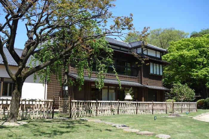 正門近くに建つ「松聲閣(しょうせいかく)」は、細川家の学問所として活用され、一時は細川家の住宅として使われていた建物です。保存修復を経て、現在は文京区の貸出施設としてリニューアルオープンしています。2階の展望所、1階の休憩室「椿」は、誰もが自由に利用可能です。