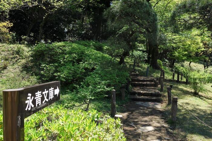 園内には、先に紹介した「永青文庫」へ通じる通路もあり、「胸突坂」を経由せずとも入館することが出来ます。