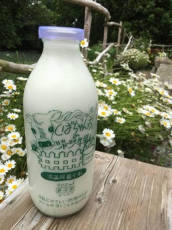まず牧場を訪れたら、搾りたての牛乳を飲みたいですよね。ジャージー牛乳を低温殺菌した「しばちゃんちのジャージー牛乳」は、濃厚でミルク本来の甘さが感じられます。900mlの大きなビンはお土産にも喜ばれそう。