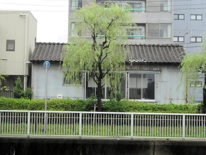 木場公園を流れる小名木川沿いにカフェがあります。店内から公園を見ることはできませんが、運河を間近に感じられますよ。公園自体はお店の目の前にあるので、散策後に立ち寄るのもおすすめです。