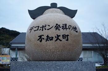 デコポンは、熊本県果実連が商標登録したもので、日本園芸農業協同組合連合会傘下の農協だけが使える名称です。基準をクリアした不知火のうち、こうした農協から出荷されたものが、デコポンという名前で流通しています。  デコポンは1991年3月1日にはじめて市場に出荷されました。15周年を記念した2006年には、初出荷の3月1日が「デコポンの日」に制定されたことでも話題になりました。比較的、新しい果物なのですね。