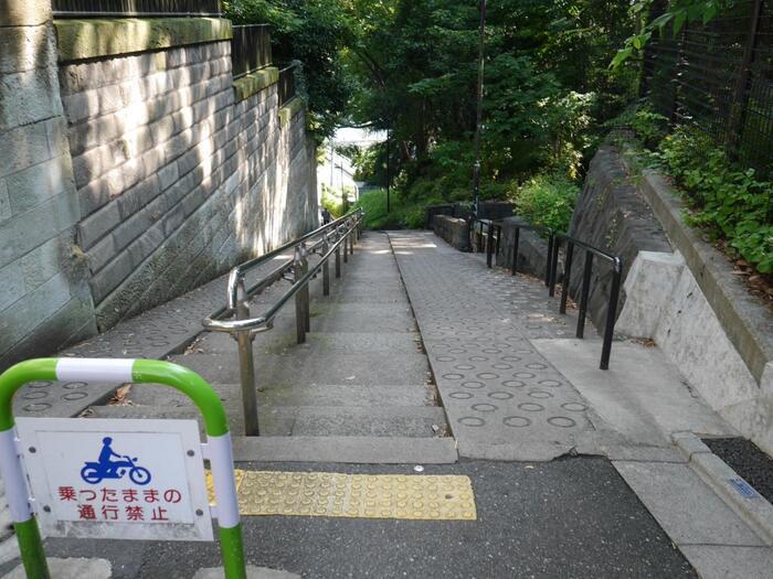 """""""*山の手""""と称される地域は、高台(台地)と台地の裾部分(低地帯)が複雑に入り組むため、概ね急坂や路地が錯綜しています。ここ音羽(小日向台地)や目白台(関口台地)も、「鼠坂」や「鉄砲坂」、「胸突坂」等など、大小様々の急勾配の坂道や曲折した細い階段、軒先が迫るような路地が、街のいたる所に生活道として残っています。 (※「山の手」の""""手""""とは、方向を指す言葉で、山の方向という意味。)  そうした坂や階段、路地に佇めば、標高差のある""""山の手""""ならではの景観と共に、歴史が育んだ独特の風情をも味わうことができます。【目白台の高台から神田川へと下る「胸突坂」】"""