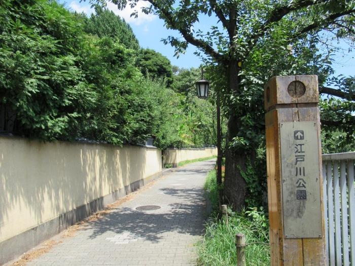 目白台斜面下の神田川沿いは、桜並木が続く「神田川遊歩道」で良く知られています。 【神田川沿いの遊歩道(胸突坂・駒塚橋付近)】