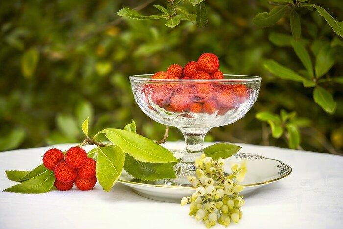 コンポートは、いろんな果物で楽しめる!基本&アレンジレシピ集