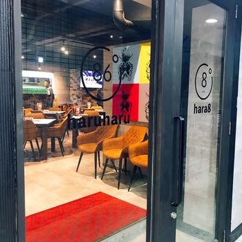 最後にご紹介するのは、難波に店舗を構える「焼肉×モダン個室 居酒屋 Haru Haru 難波店」。こちらは、一見カフェのような空間が広がっていますが、なんと焼肉を頂ける居酒屋さんなんです!カジュアルに焼肉を食べられると女性に人気のスポット♪