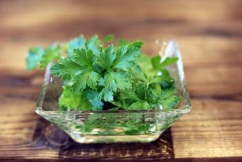 最近では葉っぱが平たいイタリアンパセリもよくスーパーで見かけ、実際に調理で使う方も増えています。