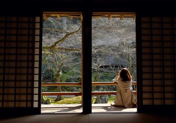 ドラマは全4話で、たびたび登場するお寺の住職とアキコのシーンも重要です。いろいろなことを淡々と受け入れるアキコ、お客さんを励ますアキコ、猫に癒やされるアキコ。カフェの日常をやさしい気持ちでのんびり観ていられます。