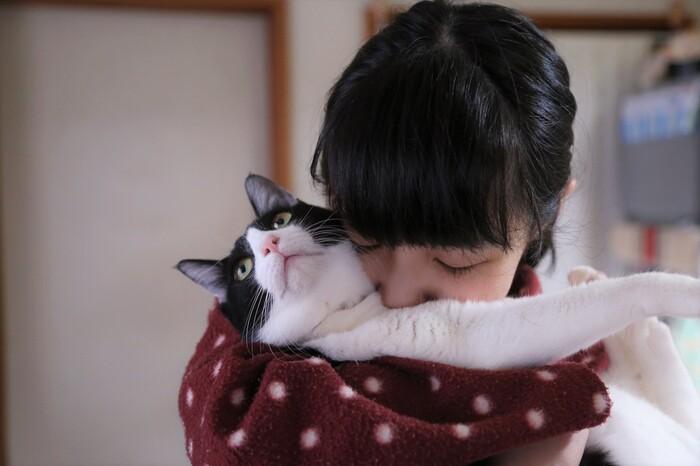 猫目線の人間観察をはさみながらゆるやかに進むストーリー。生きること、恋をすること、孤独と闘うこと。たまに疲れる人生のアレコレも、猫がいるとがんばれる気がします。