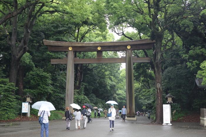 明治天皇と昭憲皇太后を主祭神として祀る明治神宮の境内には「鎮守の杜」と呼ばれる広大な深い森があります。