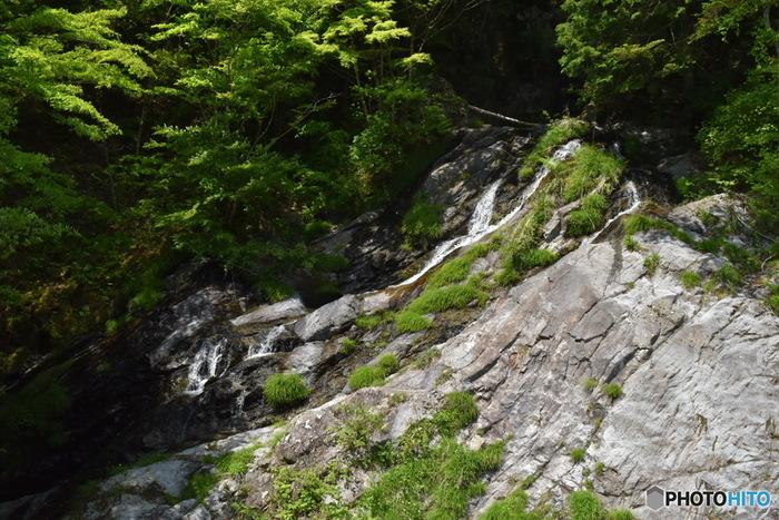 秋川渓谷では四季折々で美しい風景を楽しむことができます。春は桜、夏は深緑、秋は紅葉など、秋川渓谷は東京都内とは思えないほど豊かな自然が広がっています。