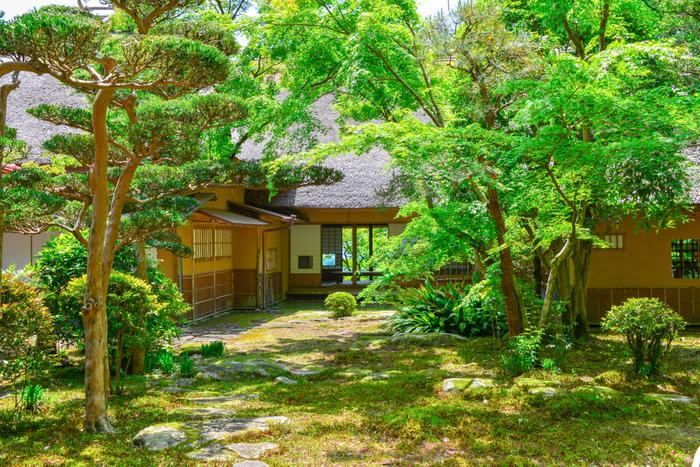 佐賀県神埼市にある「九年庵」は、明治時代に伊丹弥太郎によって造られた数寄屋造りの邸宅と日本庭園。1995年に国の名勝に指定されました。9年の歳月をかけて造られたことから命名されました。6,800平方メートルの敷地にはもみじなどの木々が植えられており、紅葉の名所として知られています。