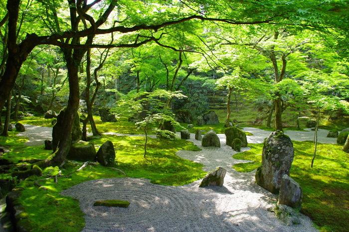 前庭は15個の石で光という文字を描いた「仏光石庭」、苔で陸を、白砂で大海を表現している「一滴海庭」は見応えがあります。日本のわびさびを感じられる和の風景が広がっています。