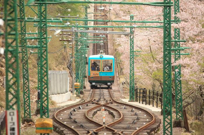 妙見山へは歩いて登ることもできますが、兵庫県川西市の「黒川」駅からケーブルカーとリフトが運行されています。体力に自信がない方は、ケーブルカーとリフトを利用すると簡単に妙見山の山頂へアクセスすることができます。