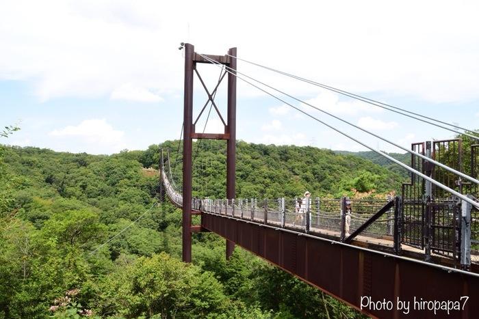 """ほしだ園地には、""""星のブランコ""""と呼ばれる長さ280メートル、高さ50メートルの吊り橋があります。星のブランコは、木床板人道吊り橋としては、国内最大規模を誇ります。"""