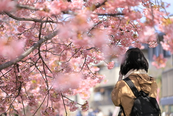 """まるで別人!?私らしく素敵なスタートを切るための春の""""イメチェンアイデア""""集"""