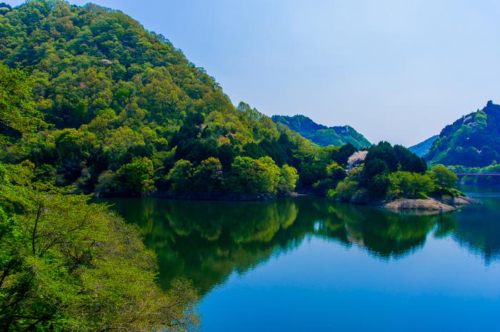 月ヶ瀬梅林は、奈良盆地と伊賀盆地の境に位置しており、名張川の下流域に形成されている深いV字渓谷です。梅の名所として名高い月ヶ瀬梅林ですが、グリーンシーズンは梅の季節とは異なる表情を見せてくれます。