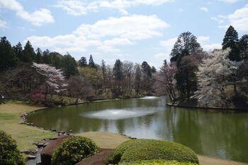 美術館の敷地には里山の地形を生かした広い庭園があり、散策も楽しめます。モネの作品を思わせるスイレンの池や自然の中にある彫刻。アートと自然がうまく融合した景色が素晴らしい。四季折々の風景を確認しに訪れたくなる場所です。