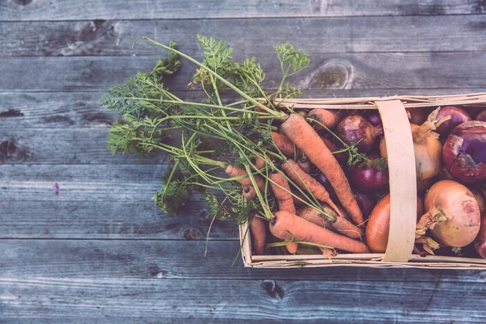 自分や家族が食べるものだから、安全で安心な食材を選びたいですよね。産地や無添加の材料が使われているのかも確認しましょう。宅配食材には有機野菜・フルーツなど栽培方法にこだわっている商品が多くありますよ。