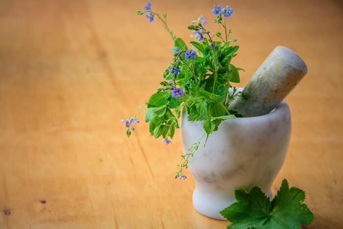 「ハーブ」とは、香りや味に何らかの作用があり、料理の香りづけや保存を高めるなどの食用のほか、薬用、防虫にも使われる「生活に役立つ」植物全般を指します。ラベンダーやローズマリー、カモミールなどヨーロッパで伝統的に使われてきた植物をイメージしますね。これらは料理やハーブティーとして食用に使われたり、アロマオイルやポプリなど香りを楽しんだりして、生活に取り入れられてきました。