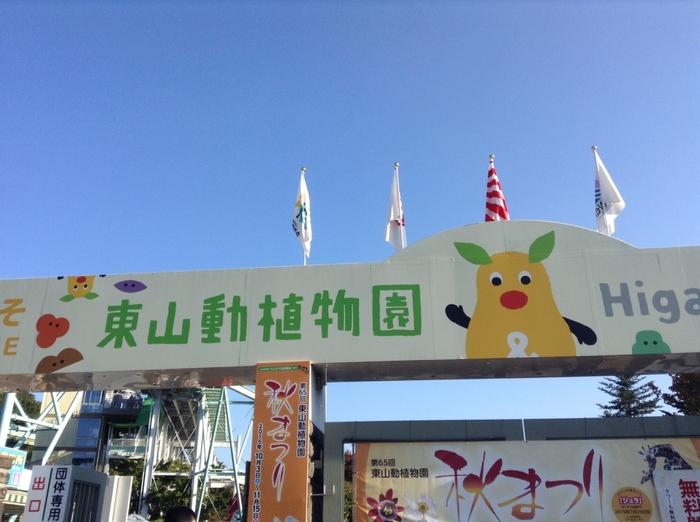 東山動植物園は、名古屋市の東山公園にある動植物園です。60ヘクタールと、かなり広大な土地の中に動物園に植物園、遊園地まであるため、一日たっぷりと遊ぶことができます。写真集なども発売されたイケメンのゴリラ、「シャバーニ」くんもこちらの東山動植物園にいます。日本で初めてコアラが来日したことでも有名です。ご家族でも存分に楽しめる遊ぶスポットです。