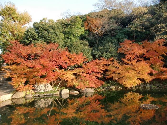 「徳川園」は名古屋でも人気の観光スポットで、湖や自然の美しさを楽しめる場所です。丁寧に細部まで整備されている庭園は見事の一言につきます。敷地内にある湖は「龍仙湖」という名で、透き通った水面には木々が美しく映りこみます。紅葉の季節には多くの方で賑わいますよ。賑やかに遊ぶのも良いですが、ゆっくりと散歩を楽しむ名古屋デートもおすすめですよ。