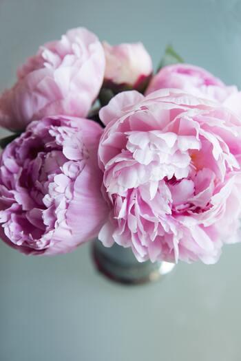 シャクヤクは花びらの数が多く、ブーケにボリュームを出すことができます。シャクヤクを入れると、可愛らしい雰囲気になり人気の花。