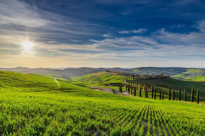 アメリカで200万部を突破したフランシス・メイズのベストセラー小説を映画化した「トスカーナの休日」は、イタリアとアメリカの合作映画です。