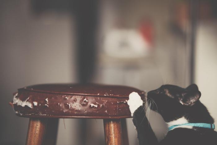ソファーや椅子など、布製品の場合はカバーがベスト。ゴムなどで着脱可能なカバーであればまたすぐに交換もできる上、安価なのでおすすめです。革製品の場合は補修シートを貼るなどで対応ができます。ただどうしても貼り付け部分が目立ってしまうので、布カバーをかぶせた方が見栄えはよくなりますよ。  また、柱や壁などはパテで穴を埋めたり、クレヨンのような専用ペンで傷に着色して目立ちにくくさせることができます。木製品はひっかき傷により毛羽立って危ないので、軽くやすりをかけてあげると良いでしょう。
