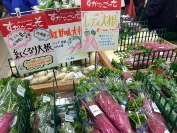 大根やキャベツなど「三浦野菜」と呼ばれるお野菜がたくさん並んでいます。どれも採れたてで新鮮そのもの。お値段も安いので、ここに立ち寄る予定なら両手が空くようリュックを持参するのを忘れずに。