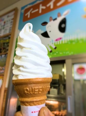 イートインスペースもあるので、ひと息つきたい時にもぴったり。ソフトクリームをはじめ、葉山牛のコロッケや海鮮ちらし寿司なども食べられますよ。