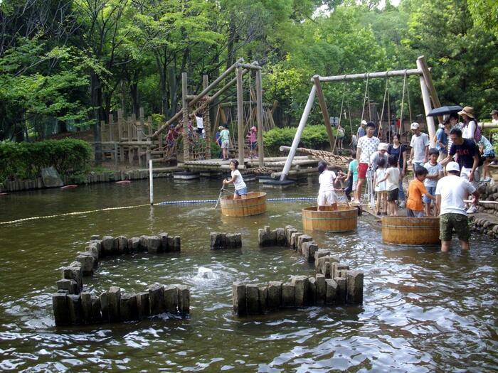 水上アスレチックは丸太を渡ったり、たらい舟に乗って移動したりと大人から子供まで楽しめる工夫がいっぱい!更衣室が用意されているので、洋服が濡れてしまったら着替えることができますよ♪小学生未満は利用できませんが、幼児用アスレチック場も併設されているのは嬉しいですよね。