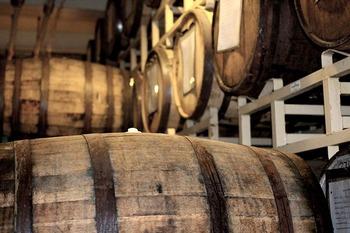 ラム酒は主に、ホワイトラム・ゴールドラム・ダークラムの3種類に分けられます。続いては、そんな種類別のラム酒について、特徴やおすすめの銘柄などをご紹介しましょう。