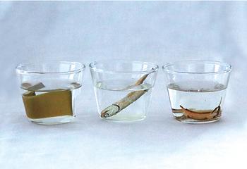 出汁は昆布、いりこ、削り節の3種類が付いています。それぞれの出汁の取り方や、味の違いを知ることができますね。一からとった出汁の美味しさを覚えると、料理への興味が深まるかも!
