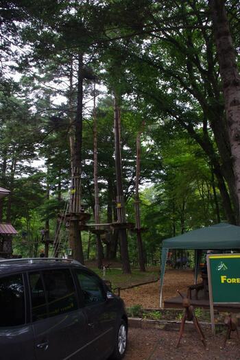 キャンプ場からすぐのところにあるのが、自然共生型アウトドアパーク「スウィートグラス・アドベンチャー」。ハーネスを装着してルオムの森の木々の中を、自らの力だけで進んでいきます。