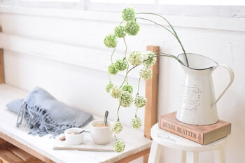 こちらもフェイクです。ピンク色のお花じゃなくても、春らしいアイテムはいろいろあります。丸いポンポンのような形がとってもかわいらしいグリーン。緑や白など春らしいカラーや、柔らかな素材感で選ぶのがコツ。  花瓶の形もナチュラルでお似合い。自由にインテリアに取り入れてみましょう♪