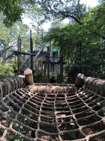 千葉県野田市の「清水公園フィールドアスレチック」は関東最大級のアスレチック。なんとフィールドと水上合わせて、100種類ものアスレチックで遊ぶことができます。