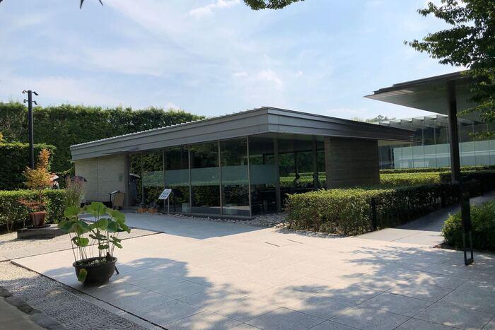 茶房・藤花は、平等院境内にある日本茶専門店です。ここでは、日本茶インストラクターが厳選して作り上げたオリジナルブレンドの本格宇治茶をいただくことができます。