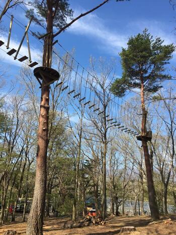 約25,000㎡もの敷地にあるのは、元々の地形を活かした空中アスレチック。地上10m以上もあるこんな高い吊り橋など、まるで森を飛び回る野猿のような視点で楽しめます。
