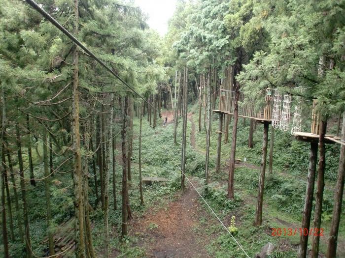 元からあった森林を守りながら作られた「ターザニア」は、自然とともに生きる自然共生型のエコパーク。遊ぶ人の年齢や身長・体重、そして難易度に合わせて3つのコースから選ぶことができますよ。