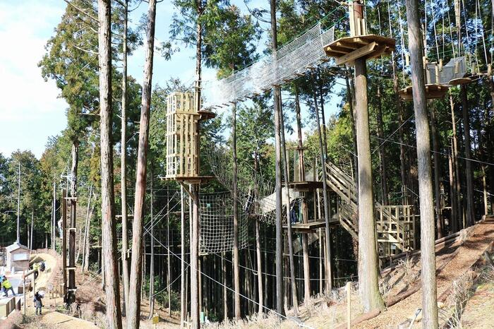 三島の森をそのまま活かしたアスレチックがいっぱい!森の中で様々なアクティビティに挑戦する「アドベンチャーコース」、難易度を抑えた「キャノピーコース」と幼児向けの「キッズコース」、そして吊り橋に向かって滑り降りる往復560mの「ロングジップスライド」と4つのコースを体験できます。