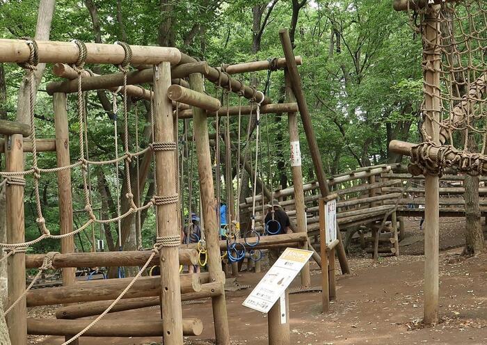 「森のアスレチック」は日本でも最大級のフィールドアスレチック!体力や年齢に合わせて4つのコースを選べます。中~上級者向けの「力だめしの森コース」はかなり難易度の高いコース。大人も思わず夢中になってしまうはずです。