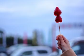 子供も、可愛らしい果物飴がおやつに出てきたら、きっと喜んでくれますよ。ぜひキュートなおやつで、素敵なひとときを過ごしてみてくださいね♪