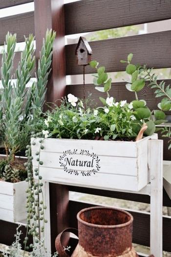 室内に飾ることが多いフェイクグリーンをお庭に取り入れるのも素敵。本物の植物と一緒に寄せ植えしています。自然に馴染むので、植物のみずみずしさも感じられます。